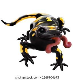 Illustration of a Animal - Salamander, Urodela