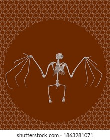Illustration of a bat skeleton
