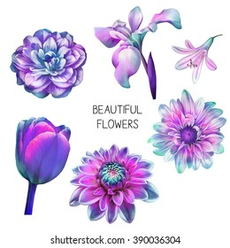 Illustration of Beautiful blue, pink flowers, set of spring flowers: rose, camellia, dahlia flower, iris, tulip, bell flower and white orchid isolated on white background