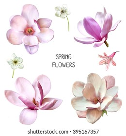 Illustration of Beautiful blue, pink flowers, set of spring flowers: cherry blossoms, bell flower and magnolia flowers in different veiws isolated on white background