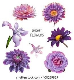 Illustration beautiful blue purple pink flowers stock illustration illustration of beautiful purple pink and blue flowers set of spring flowers iris mightylinksfo