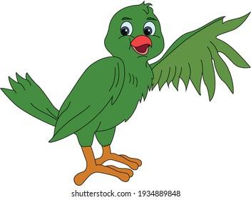 Illustration of a bird  on white background