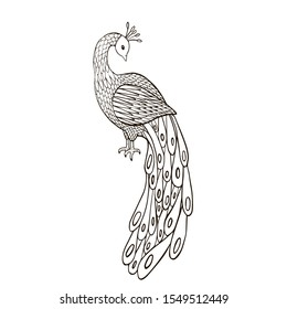 illustration black and white drawing coloring book peacock bird