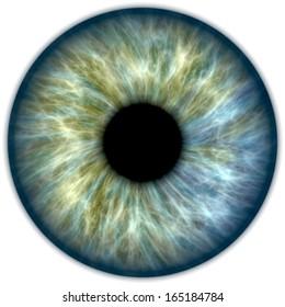 Illustration einer blauen und grünen menschlichen Iris