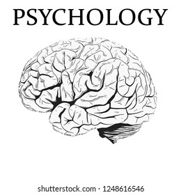 Illustration of a brain with the written psychology.
