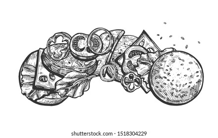 illustration of burger anatomy layered horizontal set. Sliced tomatoes, pepper rings, chopped onions, cheese slices, fried meat, fresh bun, sesame seeds, lettuce, ketchup. Vintage hand drawn style.