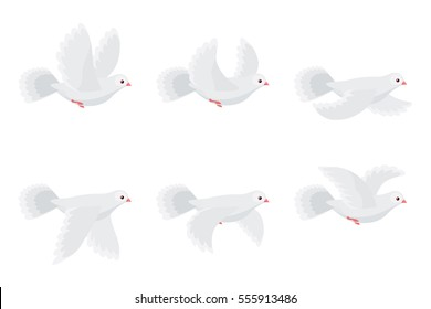Illustration of cartoon flying dove sprite sheet isolated on white background. Can be used for GIF animation