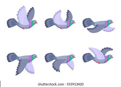 Illustration of cartoon flying pigeon sprite sheet isolated on white background. Can be used for GIF animation