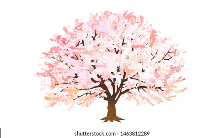 Illustration of a cherry tree in full bloom