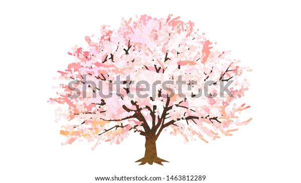 満開の桜の図