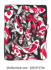 Illustration of coi carps