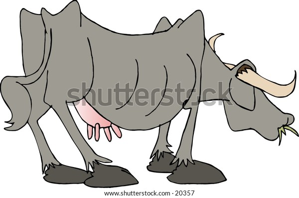 Illustration of a cow grazing.
