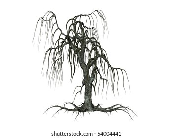 Illustration of a creepy tree, isolated agains white background