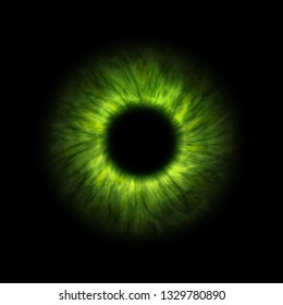 An illustration of a dark green human iris