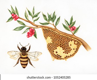 Illustration drawing style of bee hive