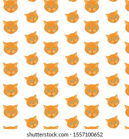Illustration face  of orange tabby cat. Isolated portrait on white background. Cat breed  Cat icon head. Cute kitty, animal's head logo in a flat style, cat's face.