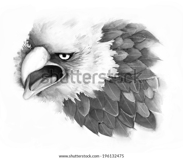 An illustration of fantasy eagle by pencil sketch