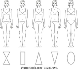 Illustration of female figure. Different body types. Raster version