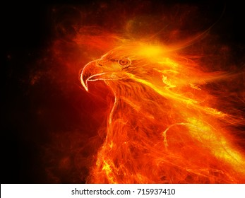 Illustration of fire burning eagle with black background