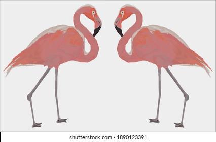 Illustration of flamingo partners .