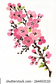 фотообои Illustration of flowering branches