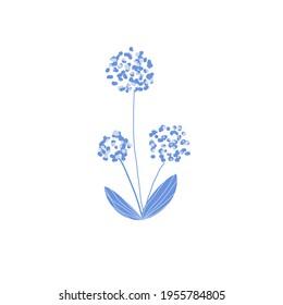 Illustration with flowers. Allium. Designed for icon, symbol, logo, print.