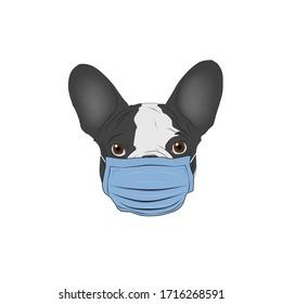 illustration of french bulldog in medical mask