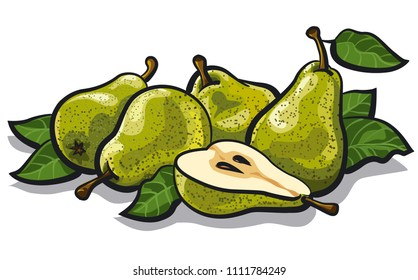 illustration of fresh tasty pears with leaves