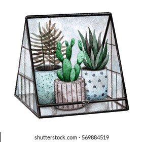 Illustration of a glass terrarium with plants. Watercolor hand painted illustration