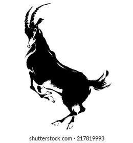illustration of goat
