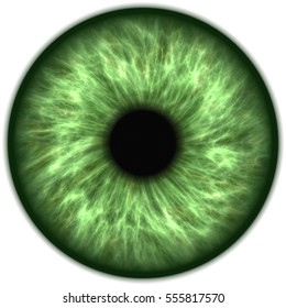 Illustration of a green human iris. Digital artwork creative graphic design.