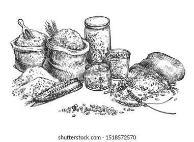 illustration of grocery croup and cereal set. Rice, corn, wheat, oat, oatmeal, peas, beans in eco packaging, glass and cloth sacks bags for farmers market craft shop. Vintage hand drawn style.