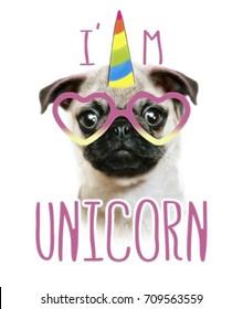 illustration of a hand drawn funny fashionable pug and unicorn.