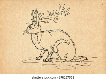 Illustration with hand-drawn Jackalope. Mystical creature and legendary beast. Ancient myths and legends. North American mythology and folklore. Vintage sketch drawing. Concept art.