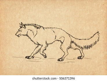 Illustration with hand-drawn werewolf. Mystical creature and legendary beast. Ancient myths and legends. Vintage sketch drawing. Heraldry and logo concept art.