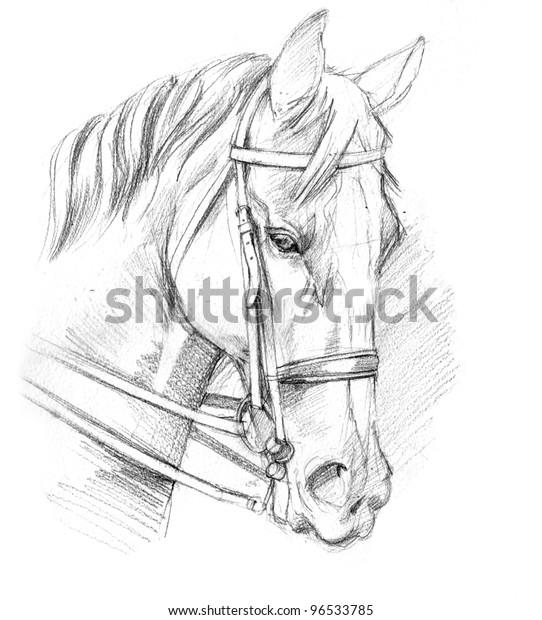 Abbildung eines Pferdezuchtbudenovets