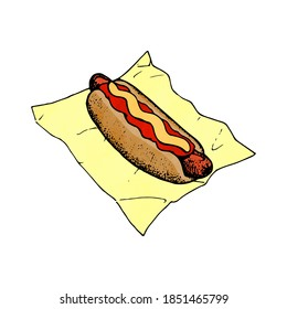 illustration of an hotdog in bun with ketchup and mustard