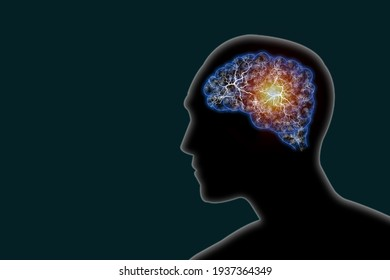 Illustration human brain and nerve or blood vessel concept in head on dark green background,