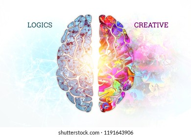 Illustration of a human brain, top view. Different halves of the human brain. The concept of the hemisphere of the mogah, the left hemisphere, the logic of calculation, the right creative creativity.