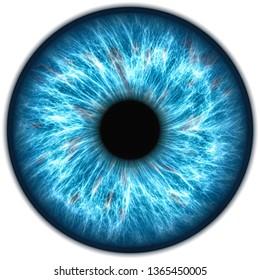 Illustration of a human iris. Digital artwork creative graphic design.