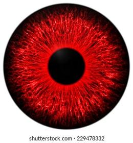 Illustration of human red eye on white background