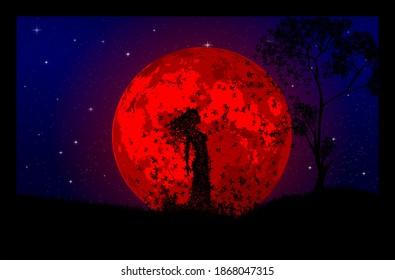 illustration of a  moon lit night