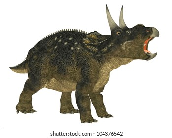 Illustration of a Nedoceratops (dinosaur species formerly known as Diceratops) isolated on a white background