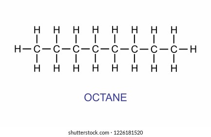 The illustration of the octane structural formula