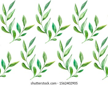 illustration on a white background. Seamless pattern of watercolor green leaves