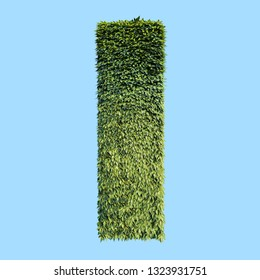 "Illustration one big green letter ""I"" of bush English alphabet  of vertical garden on a blue background. 3D rendering"