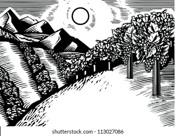 Illustration of an orchard