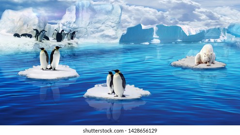 Illustration of Penguin over ice berg on blue sea water decorative background 3D wallpaper. Graphicalp oster natural modern art