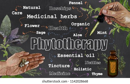 Illustration of Phytotherapy, Plants and Medicine on Blackboard with Pipette, Tablets and Herbs