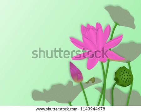 Illustration pink lotus flower leaves seed stock illustration illustration of pink lotus flower with leaves seed head and lotus bud in paper art mightylinksfo